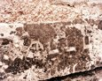 Fragmenty nagrobków z żydowskiego cmentarza