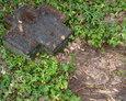 Fragment betonowego krzyża nagrobnego