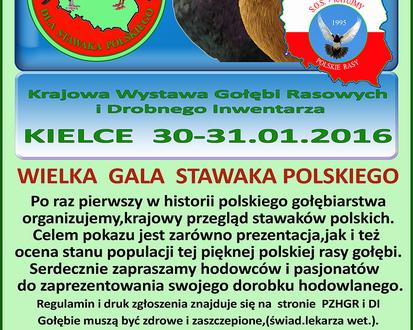 Wielka gala stawaka polskiego
