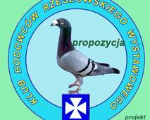 Logo Klubu rzeszowskiego wyst. - propozycja