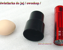 Prześwietlarka/ Owoskop