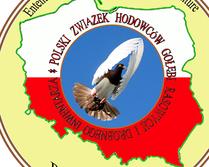 Logo- propozycja