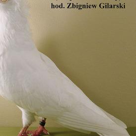 Maściuch pl.-biały