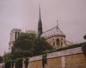 Paryż - Katedra Notre Dame
