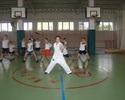 Projekt SMOK - lekcje karate