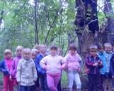 Wycieczka do lasu