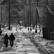 Goczałkowice-Zdrój  - idąc ulicą...