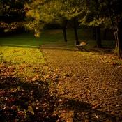 Pszczyna  -  w parku...