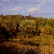 Rudołtowice  -  obok kopalni Silesia