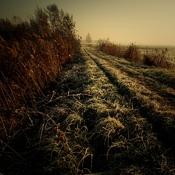 Goczałkowice-Zdrój - nad stawem