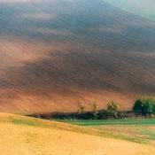 Morawy - gdzieś po drodze...