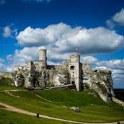 Ruiny zamku - Ogrodzieniec