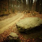Droga na Baranią Górę