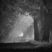 Goczałkowice-Zdrój