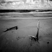 Morze - Rowy