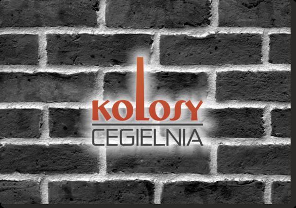 Logotyp - wersja podstawowa