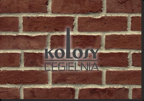 Logotyp - wersja monochromatyczna ciemna