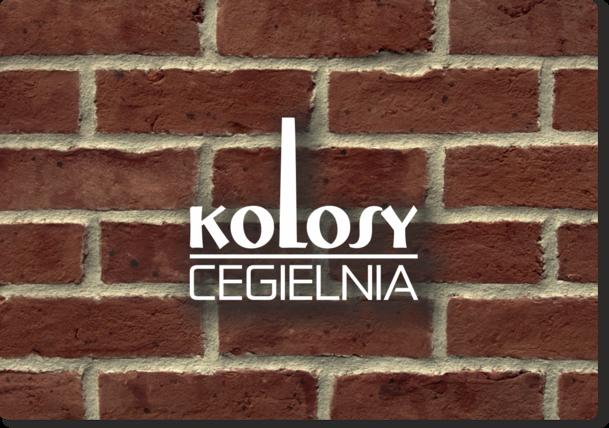 Logotyp - wersja monochromatyczna jasna