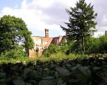 Ruiny Pałacu