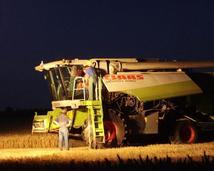 Lubo-agra spółka z.o.o. (podczas żniw)