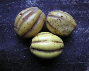 """Chińskie korale tzw. """"Melony"""", pochodzące z przełomu XVIII i XIX w."""