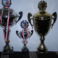 Mistrzostwa Śląska Radzionków 2012 r II miejsce 346 pkt - Najlepsze turkoty - I miejsce kanarki pojedyncze 89 pkt