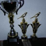Egzota Sosnowiec 2012 r II miejsce 350 pkt - najlepsze dzw.dęte - najlepsze flety