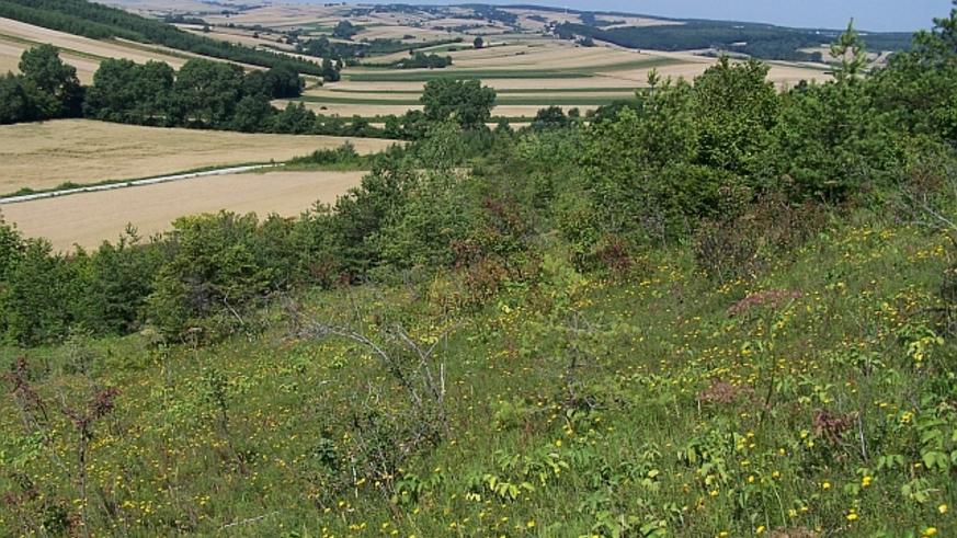 W tej dolince położona jest Kalina Mała (widok ze zbocza Kalina Lisiniec)