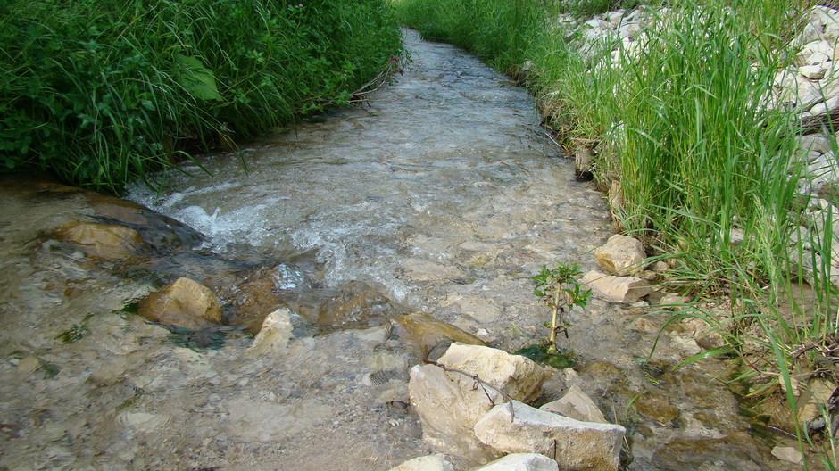 Rzeka Kalinka przecinająca drogę do Rędzin