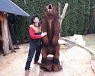 Niedźwiedż wysokość 220cm