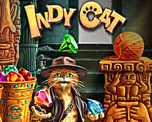 INDY CAT