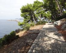 Piękne ścieżki zachęcają do spacerów