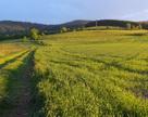 Lewin Kłodzki - okoliczne pola