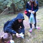 Każdy zebrany grzyb musiał być dokładnie zbadany i sprawdzony zgodnie z informacjami podanymi w poradniku młodego grzybiarza