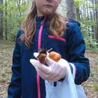 Martyna chyba nie była zadowola, że znalazła tylko pełną siatkę grzybów ;)