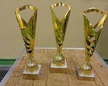 11 grudnia 2016 roku, finał cyklu turniejów w Łaziskach Górnych w 2016 roku