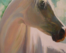 Koń biały, akryl, 60x50