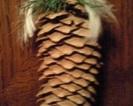 Naturalna szyszka z dekoracją (prywatne)
