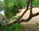 Plaża Kozia Górka 29 maja 2014