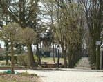 Park Pielgrzyma