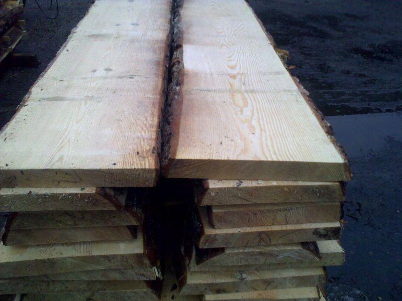 sosna jako drewno twardzielowe żywiczne